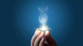 Genetik, genteknik och evolution